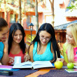 Stock Photo: Group of female students study for the exam, outdoors