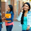 Stock Photo: Casual woman talking on the mobile phone, while walking the street