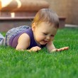 Happy smiling baby boy having fun  lying and exploring green gra - Stock Photo