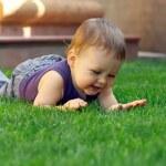 Happy smiling baby boy having fun lying and exploring green gra — Stock Photo #13672798