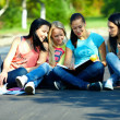 Four beautiful girls friends read books, sitting on the ground — Stock Photo