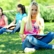 Beautiful female student learns outside on green lawn - Stock Photo