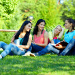 Four smiling student girls studying in green park — Stock Photo