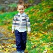Cute little boy walking in autumn park — Stock Photo