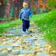 Little baby boy running in colorful autumn park — Stok fotoğraf