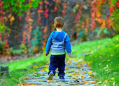 Little baby boy walking away in colorful autumn park — Stock Photo