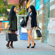 Two happy elegant women shopping in the city — Stock Photo