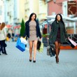 Two elegant women shopping in city stores — Stock Photo #16269059