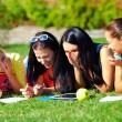 Stock Photo: Group of female students having fun on green field