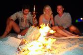 Amigos felices divirtiéndose alrededor de la fogata — Foto de Stock