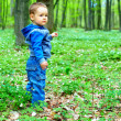 Cute baby boy walking in spring forest — Stock fotografie