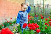 Cute baby boy in colorful spring garden — Stock Photo