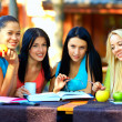 Beautiful college girls studying outdoors — Stock Photo