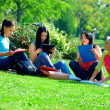 Group of female friends learn on green lawn — Stock Photo