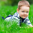 Royalty-Free Stock Photo: Cute baby boy on green grass outdoors