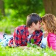 Beautiful young couple in love lying in spring grass — Stock Photo #25856461