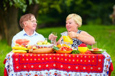 Happy mature couple having lunch outdoors — Zdjęcie stockowe