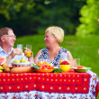 Happy family having picnic outdoors — Stock Photo
