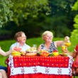 Happy family on picnic, colorful outdoors — Stock Photo