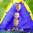 Funny kids and dog looking out from tent. summer camp — Stock Photo