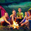 Group of happy kids roasting marshmallows on campfire — Stock Photo #28268887