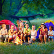 Group of happy kids roasting marshmallows on campfire — Stock Photo #28292937