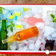 Chilled colorful beverages in ice box. summer party — Stock Photo #29938837