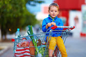 Kid in trolley after shopping — Stok fotoğraf