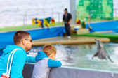 Family watching the dolphin show — Stock Photo