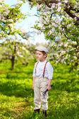 Cute kid gardener in spring apple garden — Stock Photo
