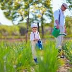 Family watering plants in vegetable garden — Stock Photo #45107095