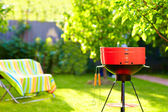 Barbecue grill on backyard party — Stok fotoğraf
