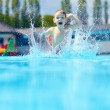 Happy boy kid jumping in the pool — Stock Photo #47726451