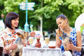 Beautiful girls with pets sitting in street cafe — Stock Photo