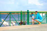 Family watching pelicans and black swans, paddock on lake — Stock Photo