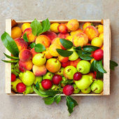 Fresh summer fruit in crate — Foto Stock