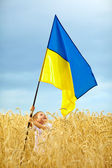 Glory to Ukraine. Boy waving ukrainian flag on wheat field — Stock Photo