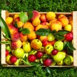 Fresh summer fruit in crate on grass — Stock Photo #49175417