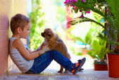 Excited boy playing with beloved puppy — Stock Photo