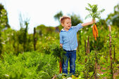Young boy with carrot enjoying life in countryside — Stock Photo