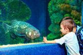 Happy kid communicating with fish in oceanarium — Stock Photo