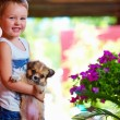 Young boy holding little puppy dog — Stock Photo #50720097
