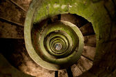 Spiral — Stock Photo