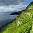 Lake Geneva - Stock Photo