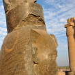 Ramses II — Stock Photo