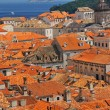 Dubrovnik — Stock Photo #13776830