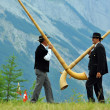 Alpine Horns - Stock Photo