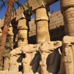 Karnak Temple — Stock Photo #48521029