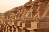 Karnak Temple — Stock Photo