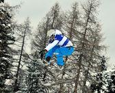 滑雪板交叉世界杯 2010 — 图库照片